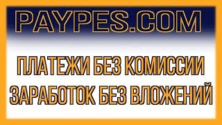 PAYPES - обзор нового кошелька, все переводы БЕЗ КОМИССИИ + ЗАРАБОТОК