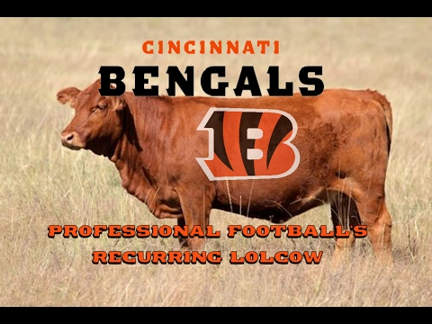 The Cincinnati Bengals: Professional Football's Recurring Lolcow
