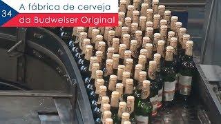 A fábrica da Budweiser Original - EP 34