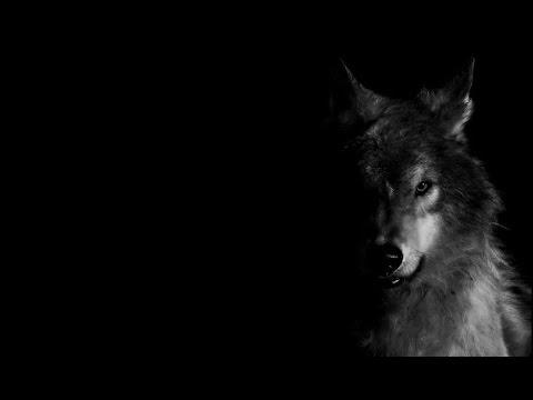 Seringai - Serigala Militia (Lirik Video)