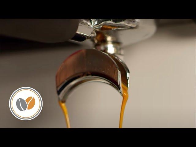 Barista Life - VBM Espresso - Love Coffee - Espressobar