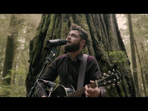 Passenger  Survivors Acoustic  from Jedediah Smith Redwood State Park, OR