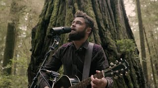 [4.54 MB] Passenger | Survivors (Acoustic Live from Jedediah Smith Redwood State Park, OR)