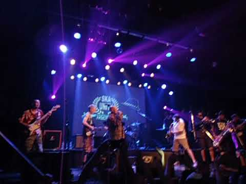Bad Manners - My Girl Lollipop (live Argentina 2017)