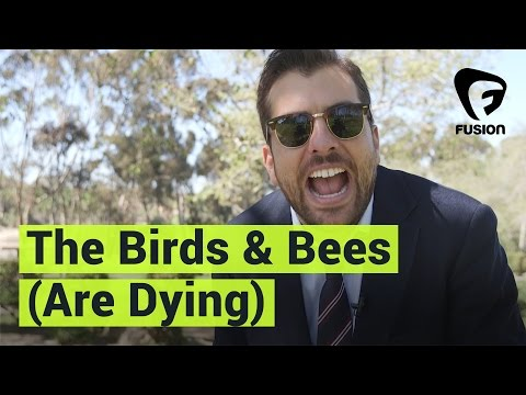 The Birds and the Bees (Are Dying)?