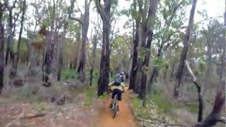 Kalamunda Circuit new Gungin trail