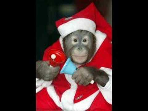monkey christmas - YouTube