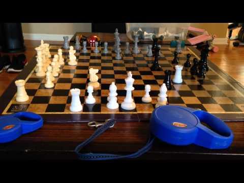Weird Things Play - Quad Chess