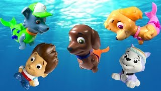 Paw Patrol Bath Toys Merpups Bath Squirters Learning Learn Colors for Children | Fizzy Fun Toys