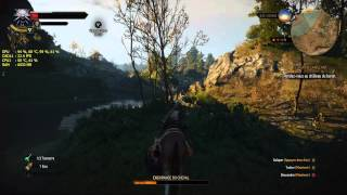 The witcher 3 (HD ultra setting)