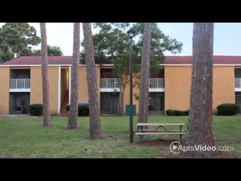 Garden Grove Apartments Sarasota Apartments For Rent YouTube