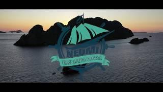 【Raja Ampat】ネオミクルーズで最高のダイビングクルーズへ【インドネシア】|Scubadiving with Neomi Cruise in Raja Ampat,Indonesia