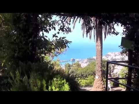 Botanical garden  Funchal Madeira