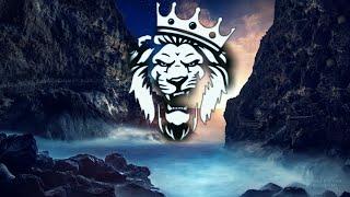 Skyvello - Emotions [Lion Release]