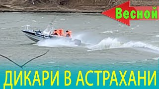ДИКАРИ в АСТРАХАНИ весной и Почему я больше не поеду в Астрахань летом