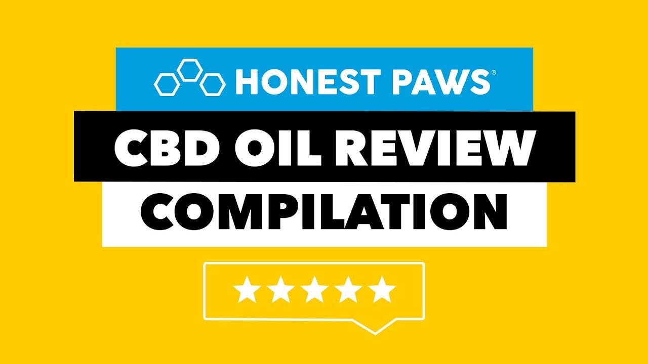 CBD Oil Review Compilation | Honest Paws