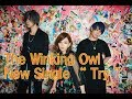 The Winking Owl  InterFM897【DFS GUESTS】