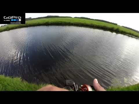 Pike Attack  On Blue Fox Spinner 7-9-2014
