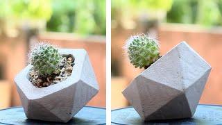 Geometric Concrete Planters made with Paper moulds | DIY planter | DIY cement pot | Cactus Pots