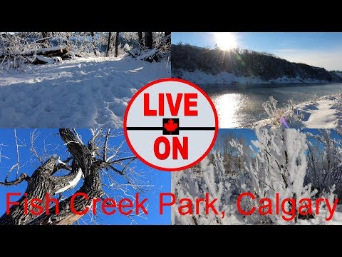 Canada's 2nd Largest Urban Park. Fish Creek, Calgary