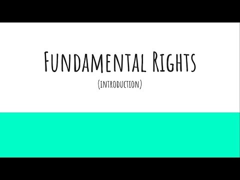 Fundamental Rights (Introduction) - Indian Constitutional Law