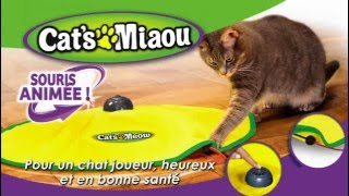 cat s miaou tapis anime pour chats