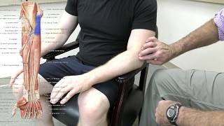 Tennis elbow, or lateral epicondylitis, is a very painful condition on the outside of the elbow from.