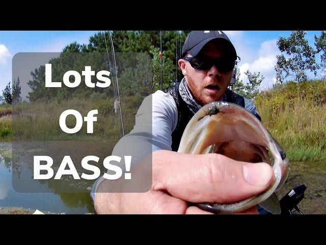 10 Bass Day while using Tech Guy Fishing Baits!