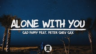 🐻 Sad Puppy - Alone With You (feat. Peter Shev Sax) (Lyrics Video)