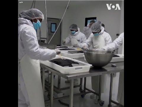 Madagascar: Nước châu Phi đầu tiên sản xuất trứng cá muối (VOA)