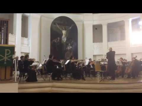Губернаторский симфонический оркестр Санкт-Петербурга.(1)
