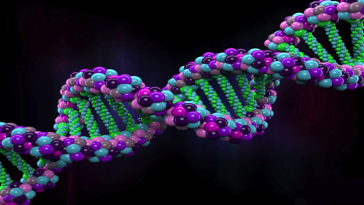 25 Insane Trivia About Genetics And The Human Genome
