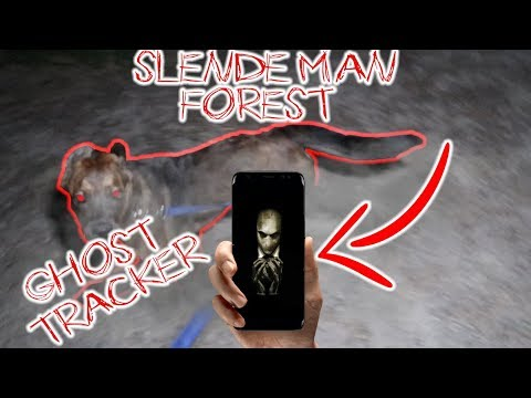 (CHASED!!) DO NOT LOOK FOR SLENDER MAN IN HIS FOREST AT 3 AM WITH YOUR DOG AND THE GHOST TRACKER APP