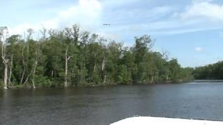 Everglades Bootsfahrt 4