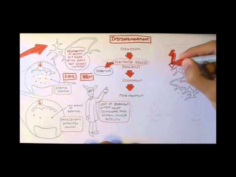 Neurodegenerative Disorder II - Parkinson's and Huntington's