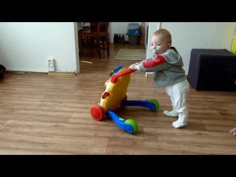 Chicco Snapshots First Steps Walker