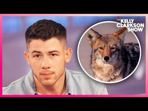 Nick Jonas Got Chased By A Pack Of Coyotes—He Thinks