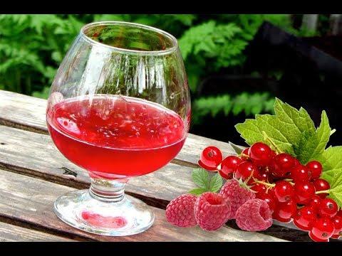 как делать вино из малины в домашних условиях рецепт