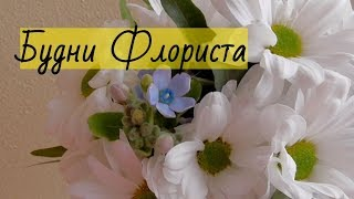 Будни ФЛОРИСТА /  Собака Гаврюша и БУКЕТ из хризантем.