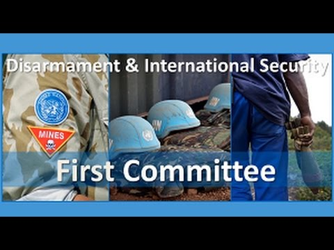 Disarmament and International Security Committee (First Committee) - Promo video