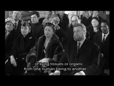 Les Yeux Sans Visage (Film)