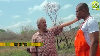 #Reportage Au Sujet De La #culture Du #gombo Sur #Agri-#TV.