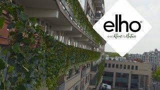 elho verrast bewoners lelijke flat met geheime groene actie