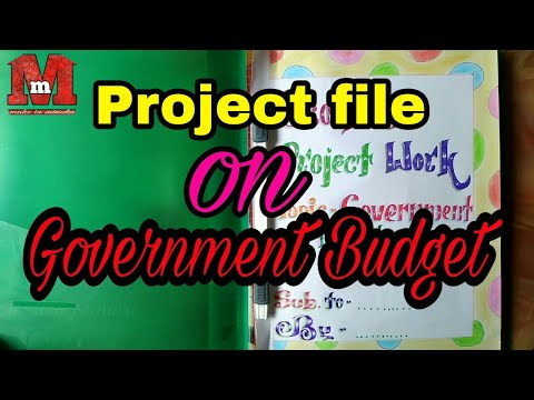 project on government budget pdf