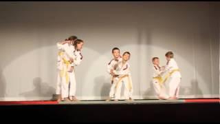 judo klub krško predstavitev ob 45 obletnici prvega karate kluba