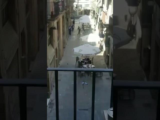 Vídeo de la policía buscando a los terroristas
