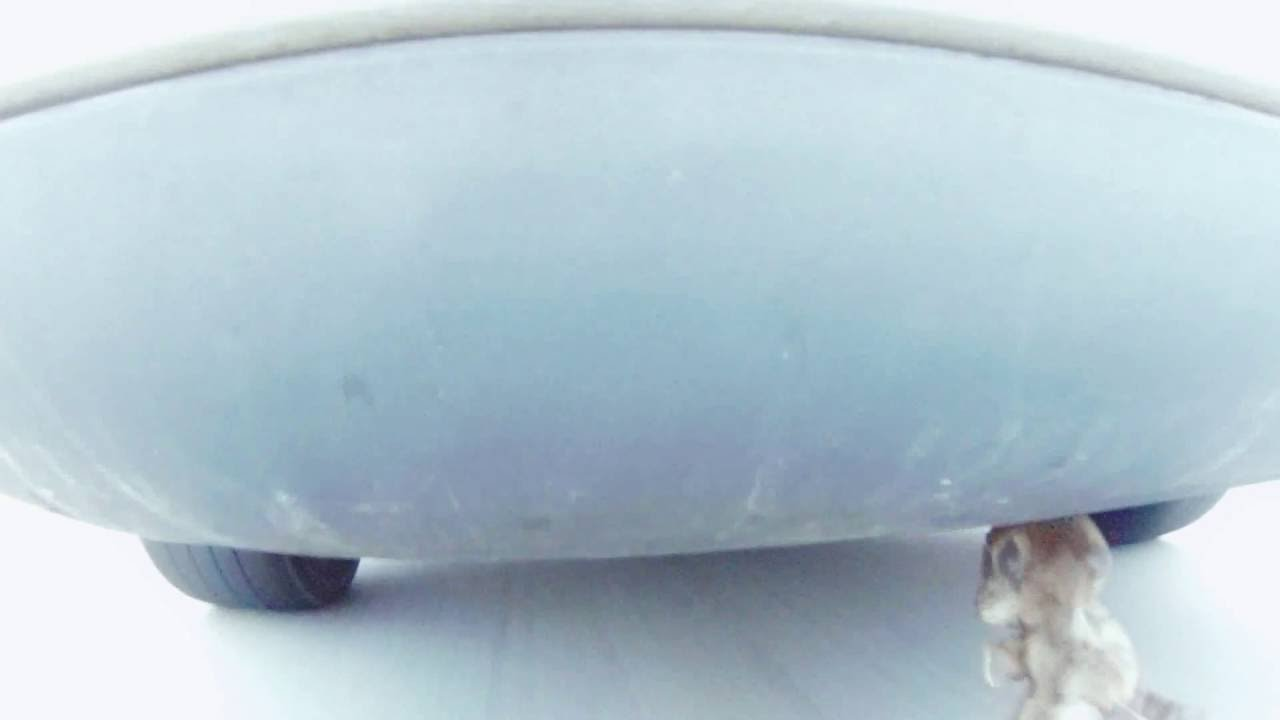 Volvo V50 T5 Exhaust: Muffler Delete