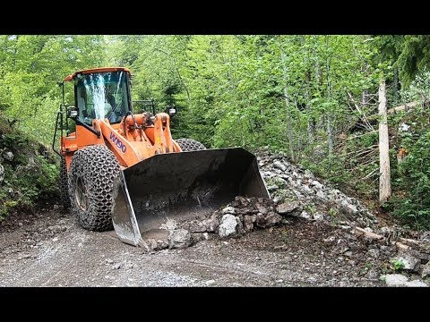 Big Machine Cleans The Forest Road!