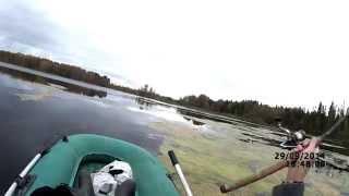 Ловля щуки на спиннинг осенью (видео-отчет) Рыбалка 29 сентября 2014 Ловля щуки на кренки