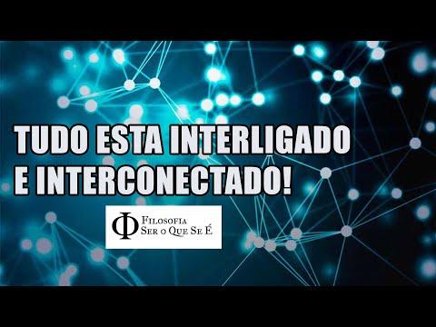 Tudo Está Interconectado E Interligado No Universo [ Filosofia Na Prática ]
